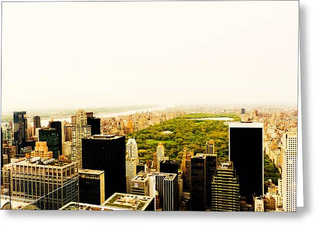 Haze Photographs Greeting Cards - Central Park and the New York City Skyline From Above Greeting Card by Vivienne Gucwa
