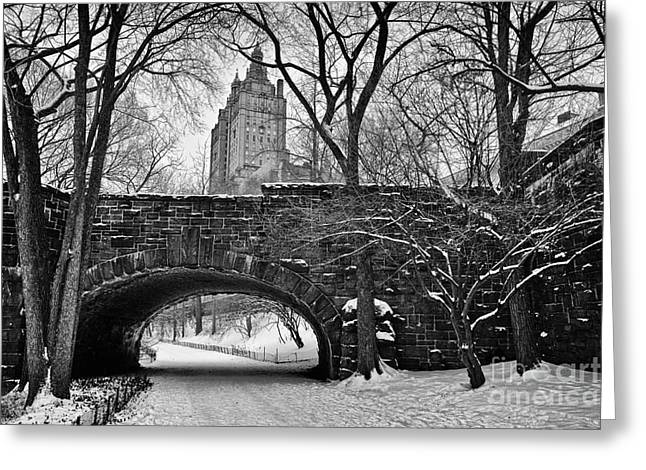 Cold Greeting Cards - Central Park and the San Remo Building Greeting Card by John Farnan