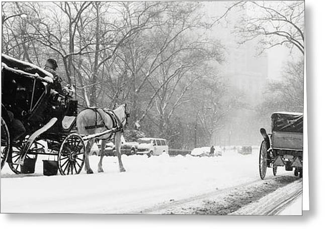 The Horse Greeting Cards - Central Park In Falling Snow Greeting Card by Axiom Photographic