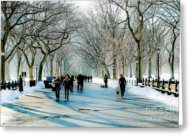 Dogwalker Greeting Cards - Central park in winter Greeting Card by Ken Marsh