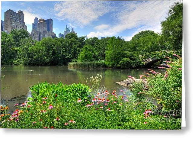 City Buildings Greeting Cards - Central Park Greeting Card by Kelly Wade