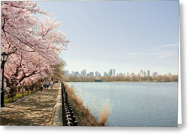 Jacqueline Kennedy Greeting Cards - Central Park Greeting Card by Nancy Kennedy