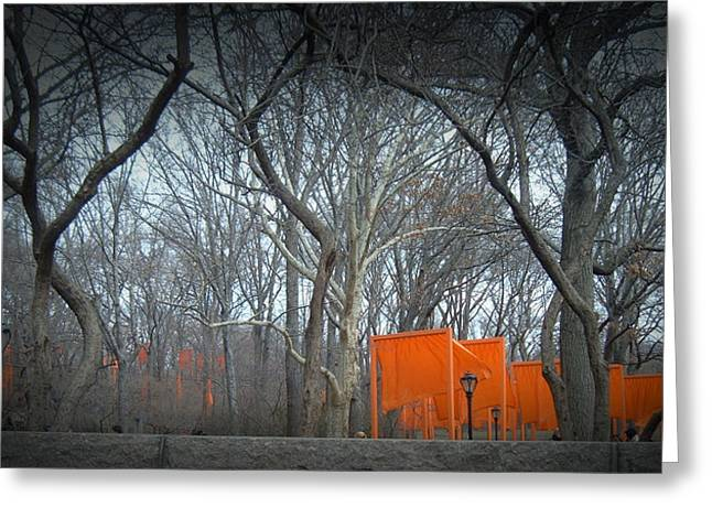 Cabs Greeting Cards - Central Park Greeting Card by Naxart Studio