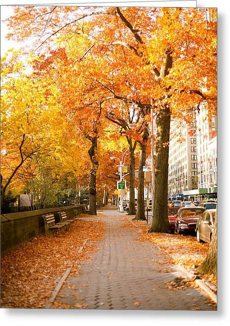 Central Park West Greeting Cards - Central Park West Greeting Card by Ariane Moshayedi