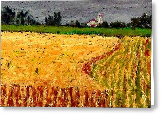 Amish Farms Pastels Greeting Cards - Central Pennsylvania Summer Wheat Greeting Card by Bob Richey