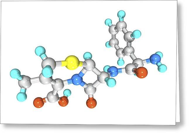 Pharmacological Greeting Cards - Cephalexin Drug Molecule Greeting Card by Laguna Design