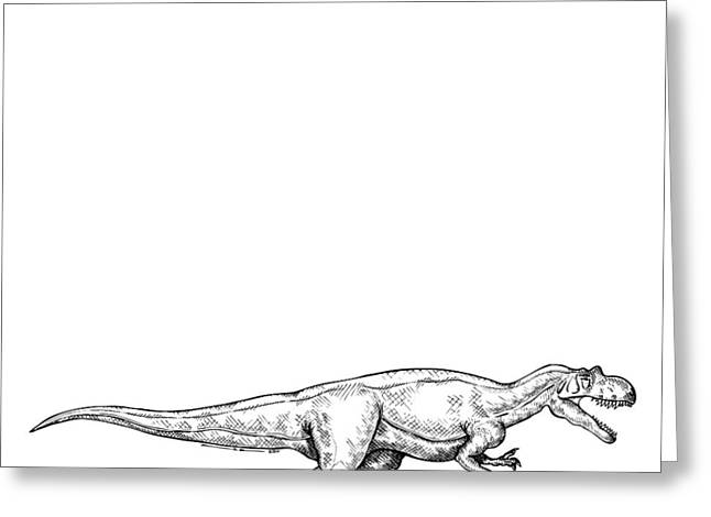 Ink Outlines Greeting Cards - Ceratosaurus - Dinosaur Greeting Card by Karl Addison