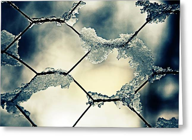 chainlink fence Greeting Card by Joana Kruse