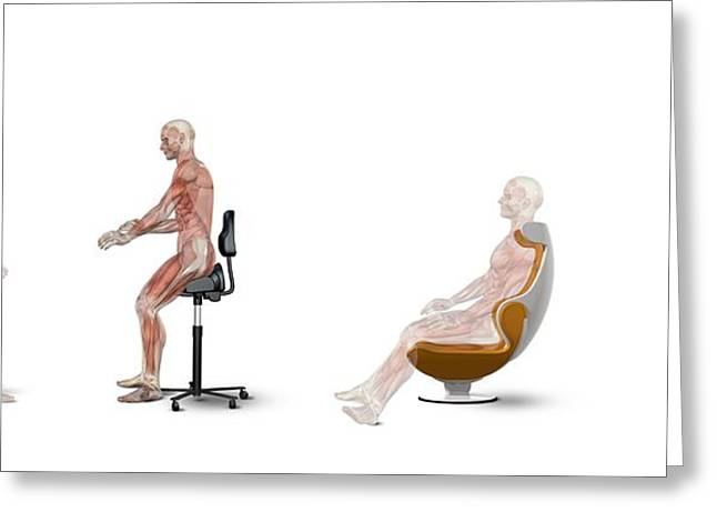 Workspace Greeting Cards - Chair Ergonomics, Correct Postures Greeting Card by Claus Lunau