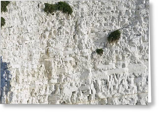 Geomorphology Greeting Cards - Chalk Rock Strata Greeting Card by Adrian Bicker