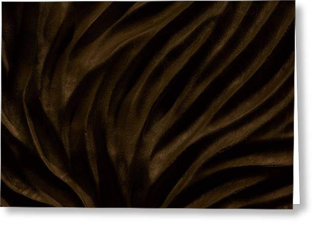 Wood Reliefs Greeting Cards - Changing Currents -- detail Greeting Card by Evan Leutzinger