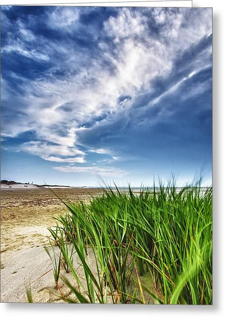 Cape Cod Massachusetts Greeting Cards - Chapin Beach Greeting Card by Rick Berk
