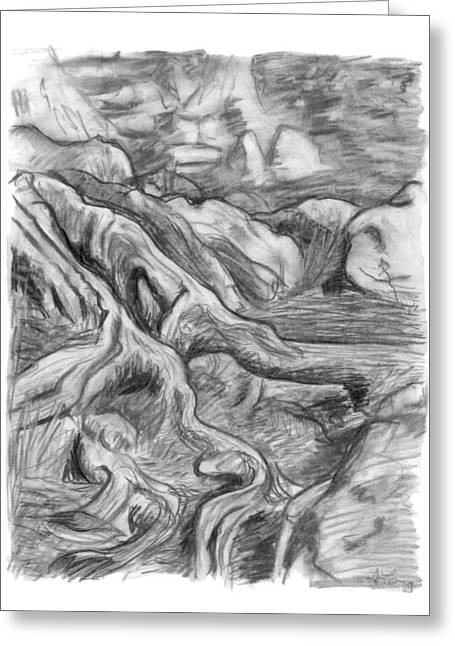 Roots Drawings Greeting Cards - Charcoal drawing of gnarled pine tree roots in swampy area Greeting Card by Adam Long