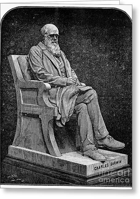Statue Portrait Photographs Greeting Cards - Charles Darwin (1809-1882) Greeting Card by Granger