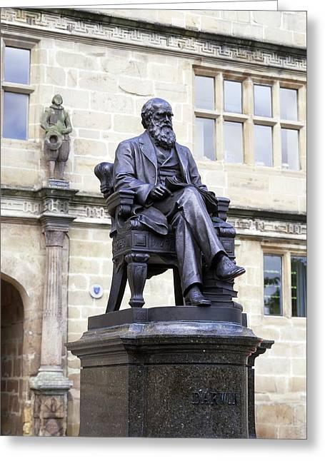 Legs Crossed Greeting Cards - Charles Darwin, British Naturalist Greeting Card by Martin Bond