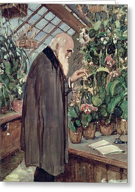 At Work Paintings Greeting Cards - Charles Robert Darwin Greeting Card by John Collier