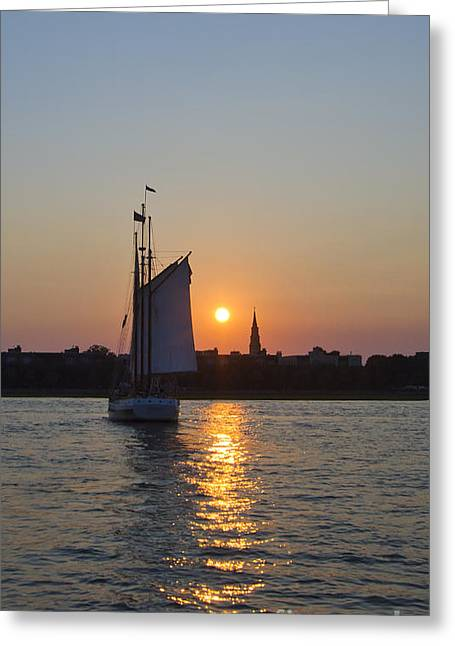 Sailing Boat Greeting Cards - Charleston Schooner Sunset Greeting Card by Dustin K Ryan