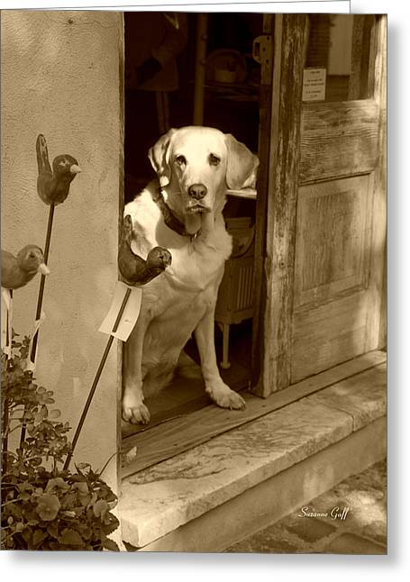 Retriever Prints Digital Art Greeting Cards - Charleston Shop Dog in sepia Greeting Card by Suzanne Gaff