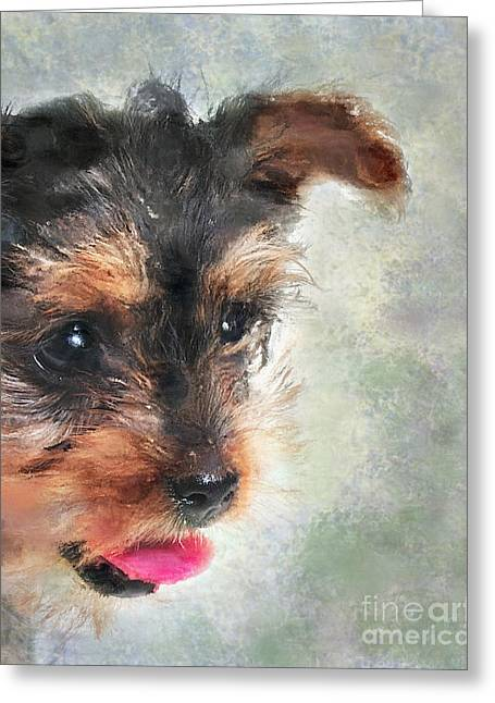 Puppies Digital Greeting Cards - Charming Greeting Card by Betty LaRue