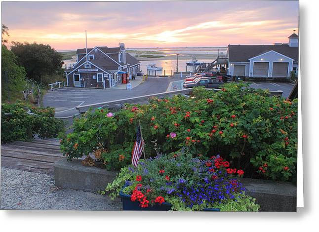 Chatham Greeting Cards - Chatham Fish Pier Summer Flowers Cape Cod Greeting Card by John Burk