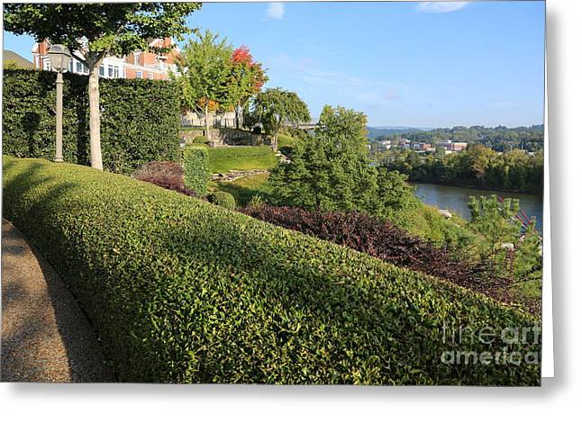 River View Greeting Cards - Chattanooga Viewpoint Greeting Card by Carol Groenen