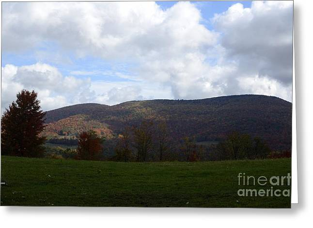 High Virginia Images Greeting Cards - Cheat Greeting Card by Randy Bodkins