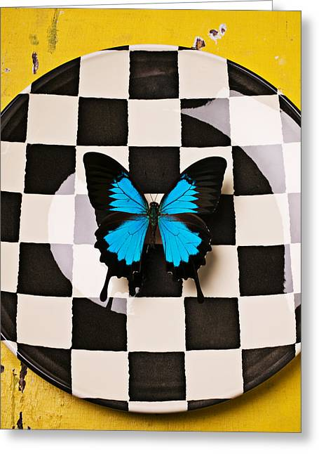 Blue Butterfly Greeting Cards - Checker plate and blue butterfly Greeting Card by Garry Gay