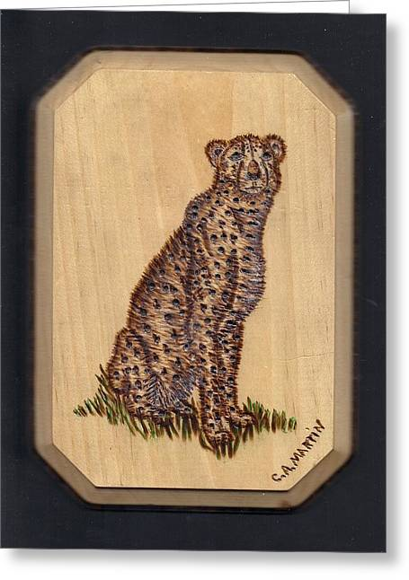 Cheetah Greeting Card by Clarence Butch Martin