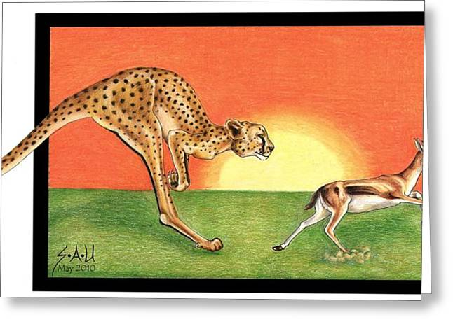 Colour Pencil Greeting Cards - Cheetahroo on the Hunt Greeting Card by Sheryl Unwin