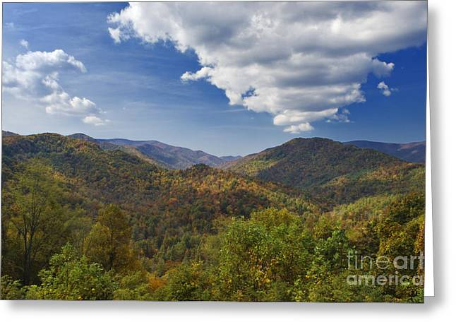 Beautiful Scenery Greeting Cards - Cherohala Skyway Autumn - D007684 Greeting Card by Daniel Dempster