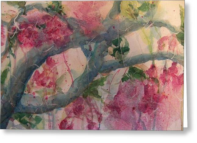 Cherry Blossoms Greeting Card by Sandy Collier
