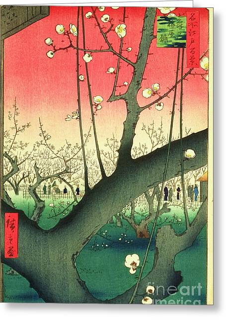 Cherry Blossoms Greeting Card by Roberto Prusso