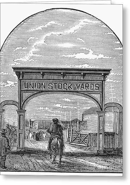 Chicago: Stockyards, 1878 Greeting Card by Granger