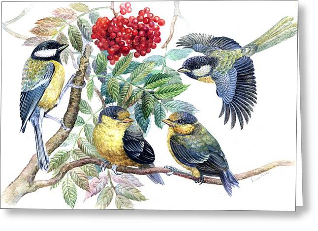 Naturalistic Greeting Cards - Chickadee birds Greeting Card by Darya Tsaptsyna