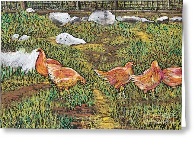 Chicken Coop Greeting Cards - Chickens Greeting Card by Reb Frost