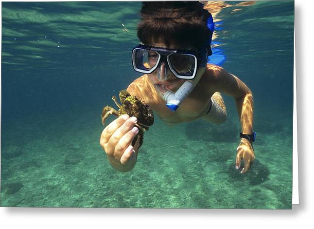 Snorkelling Greeting Cards - Child Holding A Crab Greeting Card by Alexis Rosenfeld