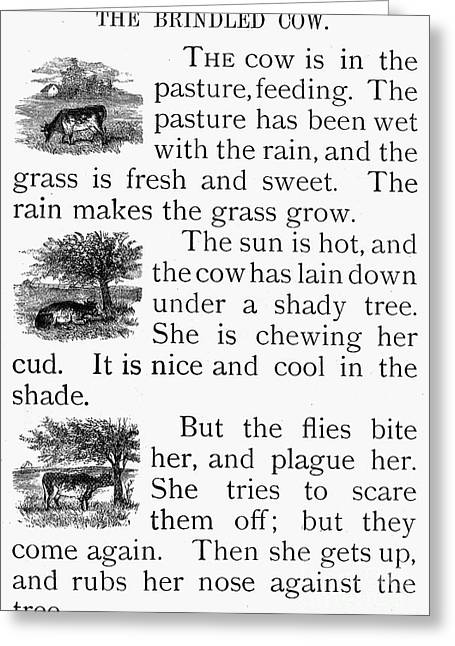 Magazine Pages Greeting Cards - Childrens Magazine, 1873 Greeting Card by Granger
