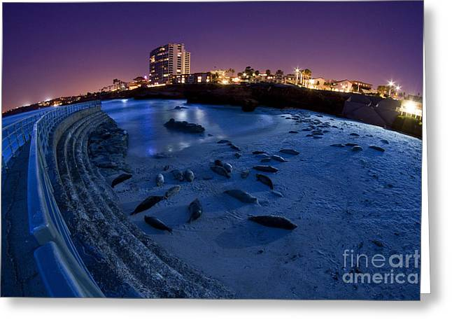California Beach Greeting Cards - Childrens Pool 6 Greeting Card by Daniel  Knighton