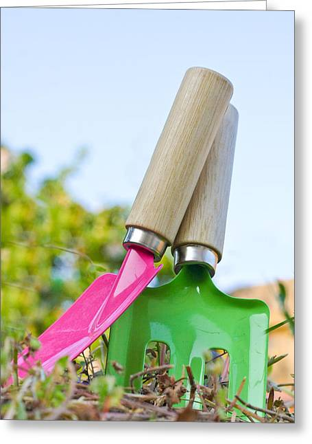 Digs Greeting Cards - Childrens spade and trowel in a garden Greeting Card by Tom Gowanlock