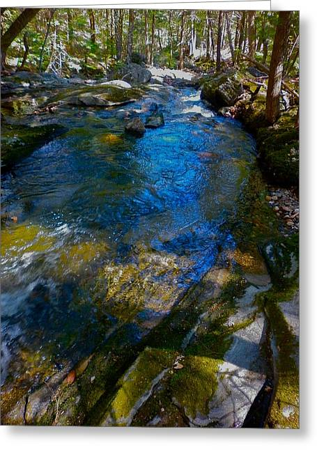 Dappled Light Greeting Cards - Childs Brook WZ 26 Greeting Card by George Ramos