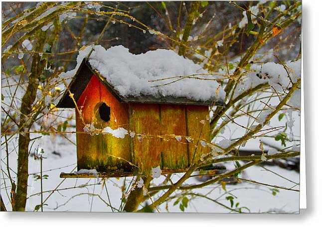 Snow Tree Prints Greeting Cards - Chilly Birdhouse Greeting Card by Debra and Dave Vanderlaan