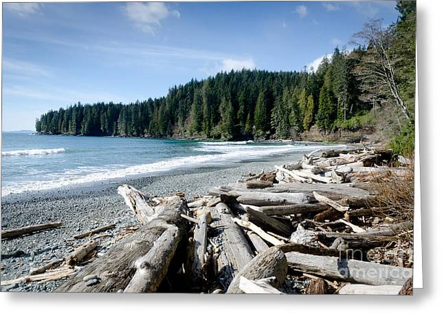 China Beach Greeting Cards - CHINA BEACH vancouver island juan de fuca provincial park Greeting Card by Andy Smy