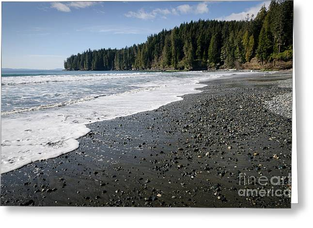 China Wave China Beach Juan De Fuca Provincial Park Vancouver Island Bc Greeting Card by Andy Smy