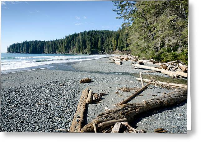 China Beach Greeting Cards - CHINA WIDE china beach juan de fuca provincial park vancouver island BC canada Greeting Card by Andy Smy