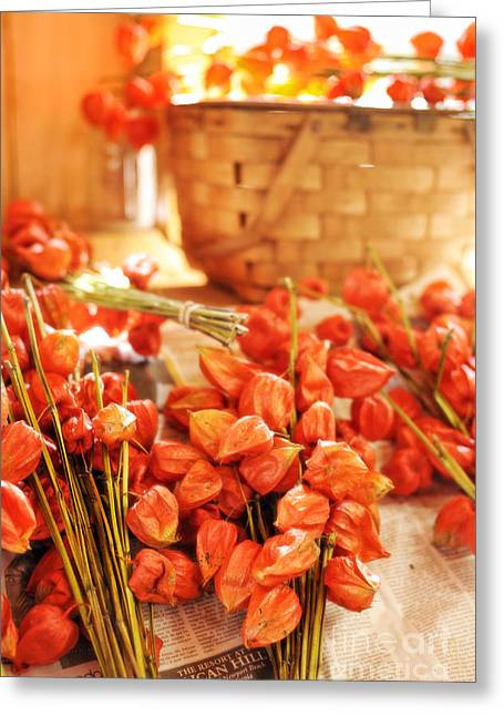 Chinese Lanterns Greeting Cards - Chinese Lanterns Greeting Card by HD Connelly