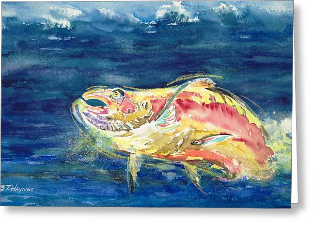 Chinook Paintings Greeting Cards - Chinook Salmon Greeting Card by Tanya L Haynes - Printscapes