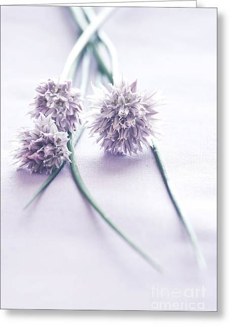Green Chives Greeting Cards - Chives Greeting Card by HD Connelly