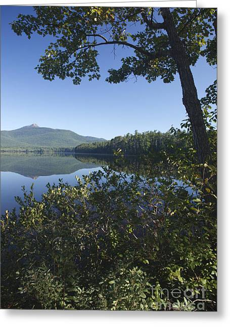 Tamworth Greeting Cards - Chocorua Lake - Tamworth New Hampshire Greeting Card by Erin Paul Donovan
