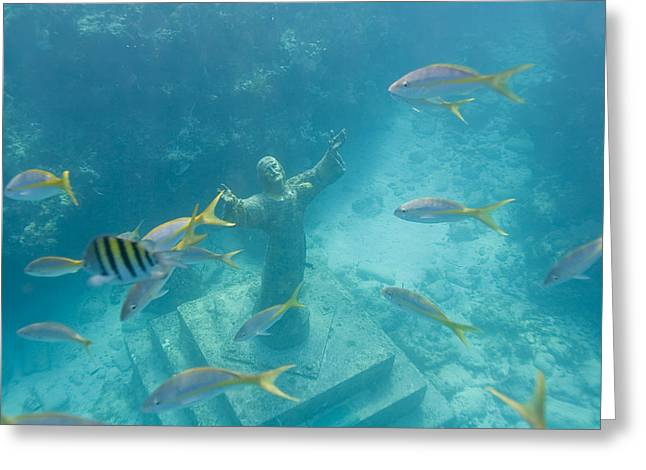 Christ Of The Deep Statue In A Coral Greeting Card by Mike Theiss