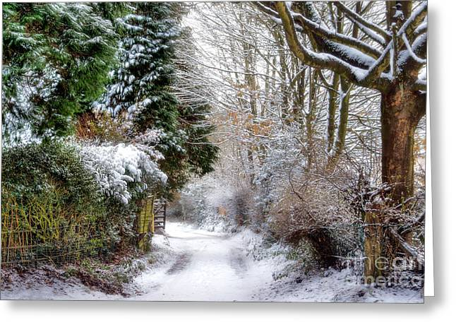 Cannock Chase Greeting Cards - Christmas on the Chase Greeting Card by Ann Garrett